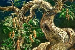 lukisan-sunarno-bonsai_asem